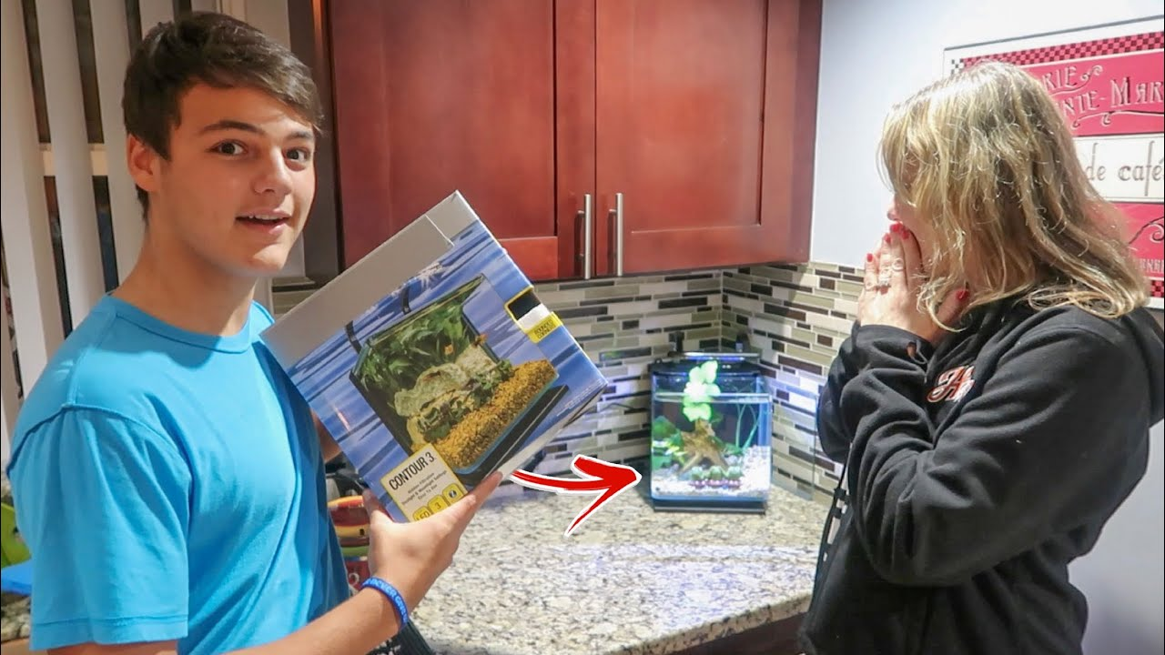 surprising-my-mom-with-new-fish-tank