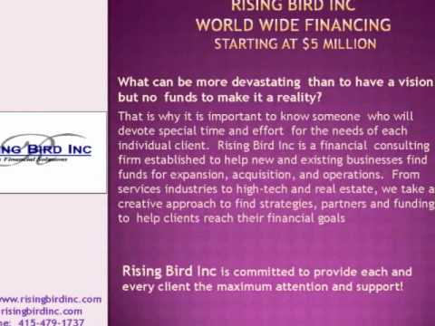 Rising Bird Inc Business Capital