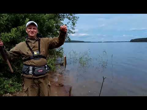 Рыбалка на Селигере. День первый - разведка и первые забросы.