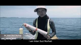 Marine Environmental Studies in Jakarta's Backyard (English subtitle)