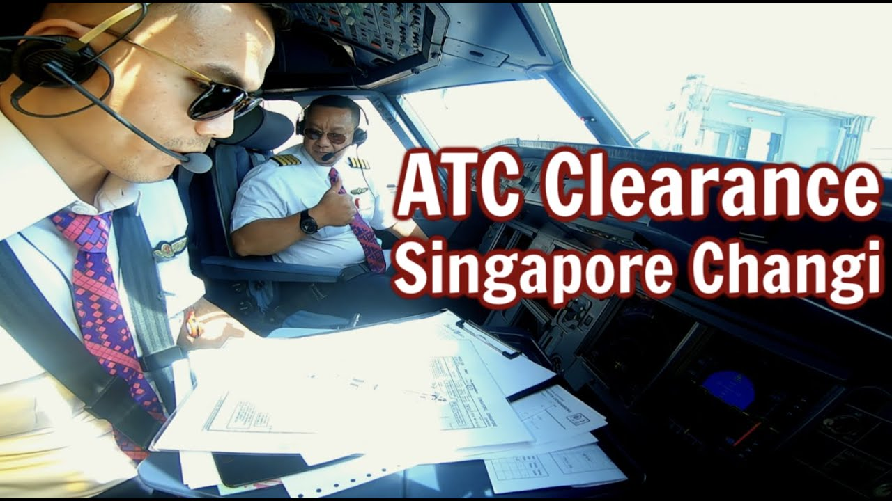 Daily Vlog 101 - How to get Clearance in Singapore Changi Airport