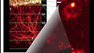 Deep Vascular Imaging in Wounds by Two-Photon Fluorescence Microscopy