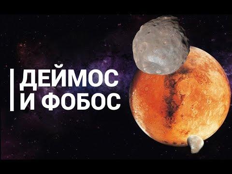 Что называют планеты земной группы в Солнечной системе