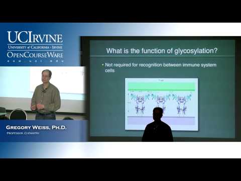 Introduction to Chemical Biology 128. Lecture 15. Glycobiology & Polyketides.