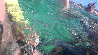 Ocho Rios - Snorkelling on Dunn's River Falls Tour