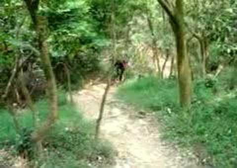 LP MTB Trail 20060513