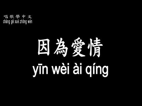【唱歌學中文】 陳奕迅,王菲 - 因為愛情 chén yì xùn,wáng fēi - yīn wèi ài qíng 『一切都是幸福的模樣 ...