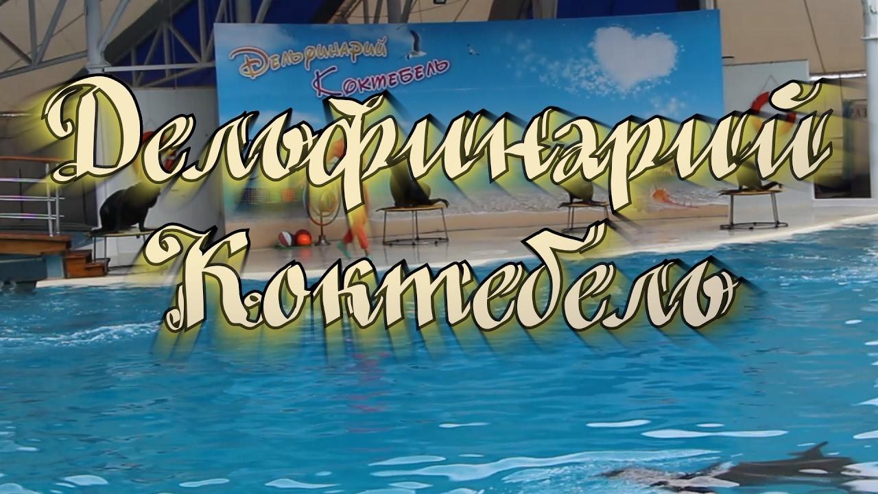 Картинки по запросу коктебель Дельфинарий