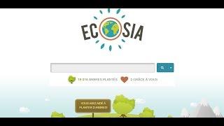 Déforestation : un nouveau moteur de recherche qui plante des arbres - Ecosia