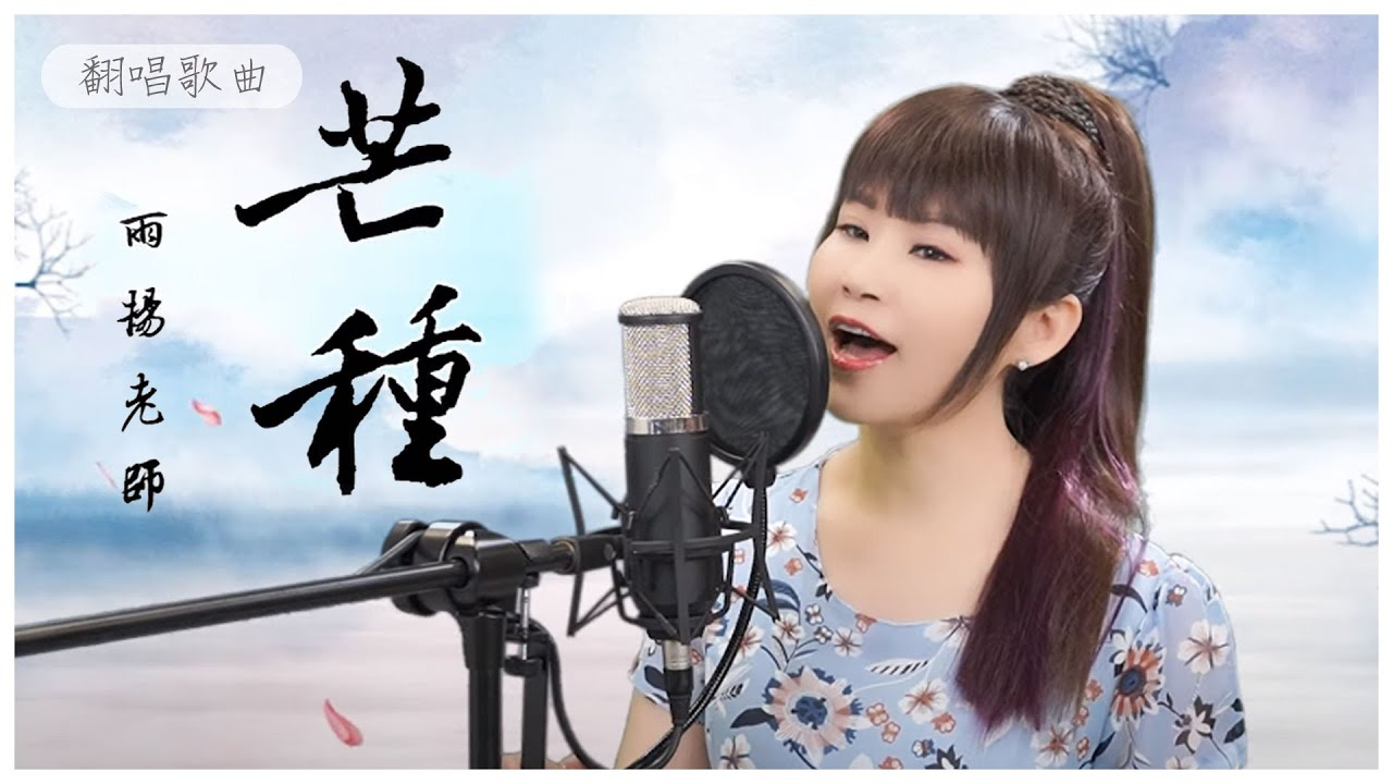 《芒種》MV 華語翻唱 雨揚老師