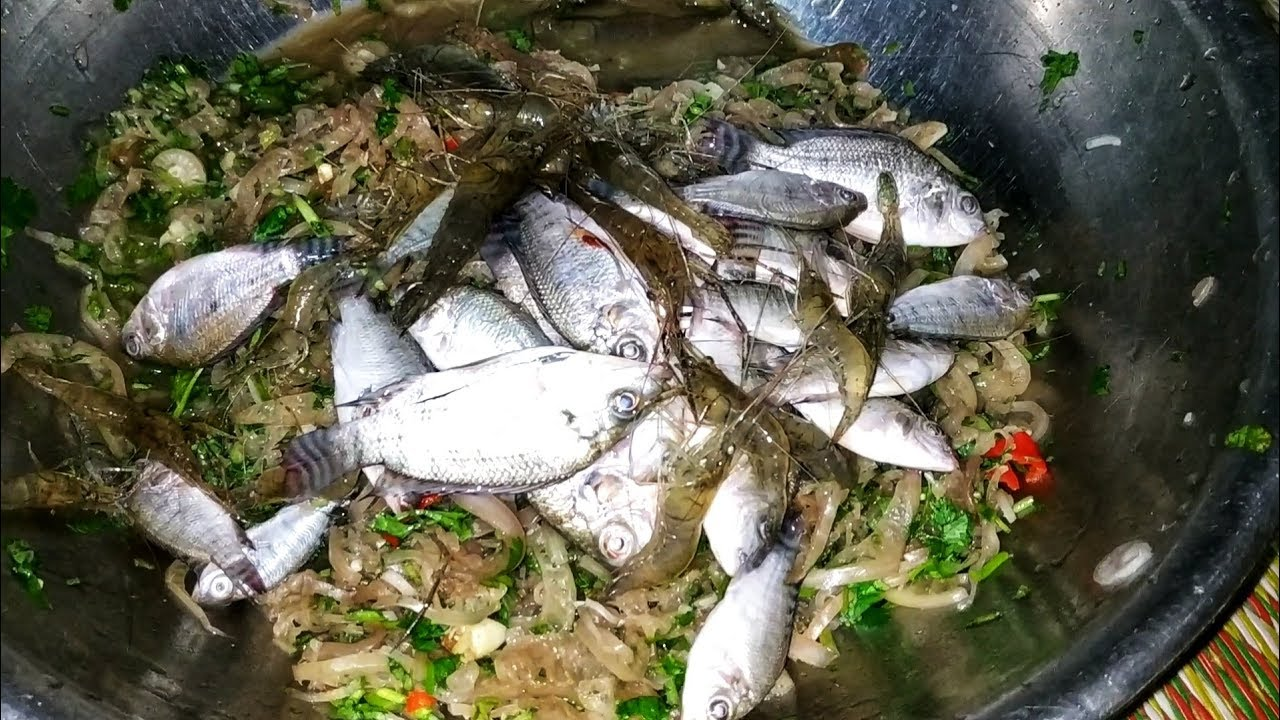 Ăn Gỏi Cá Nhảy, Tôm Nhảy ( Ăn Cá Rô Phi Sống, Tôm Sống )