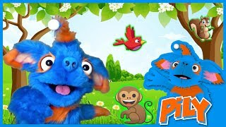 What Animals Live in Trees?   Pily Educational Videos for Toddlers