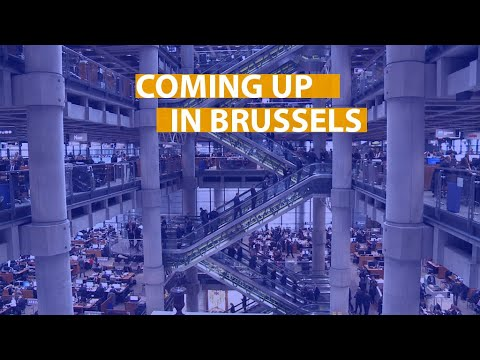 Coming up in Brussels: bees, taxation and terrorism