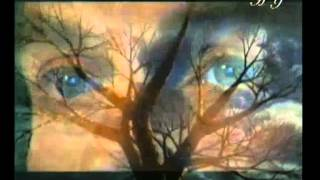 MIRACLE IN THE EYE - TWO EYES, ONE SIGHT BINOCULAR VISION