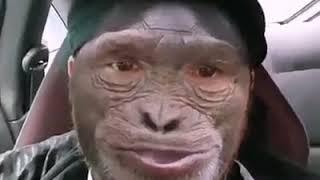 Jajajaja para los que entienden el runa simi
