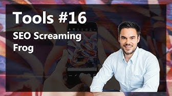 Professionelles SEO mit der Spinne - Screaming Frog Analyse / Tools #16