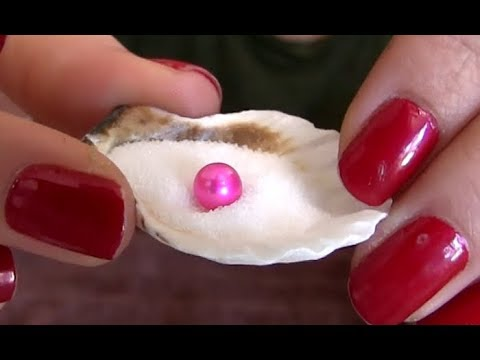 Opening an Oyster with Hot Pink Pearl Inside - Pearl Party with Hot Pink Akoya Oysters