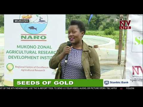 FARM CLINIC: The 19th Edition of Seeds of Gold   2020