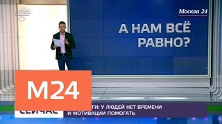 Смотреть видео Как защитить другого и не нарушить закон - Москва 24 онлайн