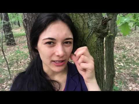 Vlog #206 - Eine Intrige zur richtigen Zeit?// Wieso zeigt man das Strache-Video jetzt?!
