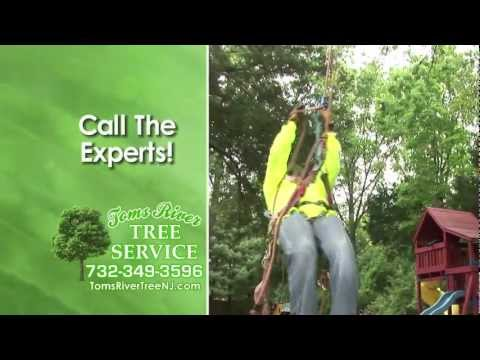 toms-river-tree-service-and-landscaping-services