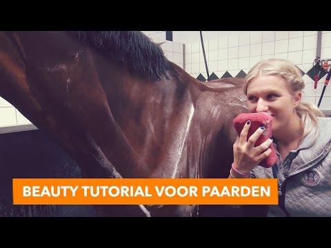 Beauty tutorial voor paarden met Britt en Eve | PaardenpraatTV
