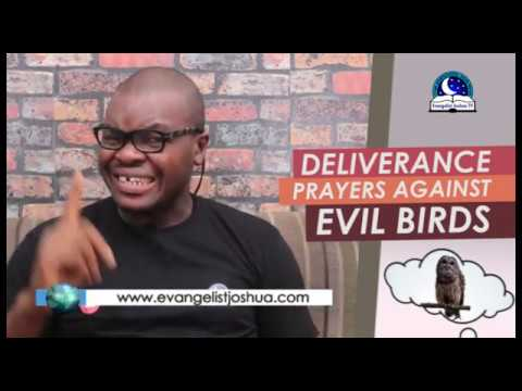 Download POWERFUL PRAYERS TO DESTROY EVIL BIRDS ATTACKING YOU