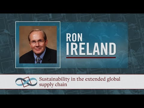 Sustainability in the extended global supply chain