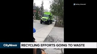 Garbage collector caught mixing recycling and trash in Newmarket