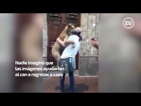 Le Decían 'Firulais' Y Se Hizo Famoso Durante Las Recientes Protestas En Cuenca