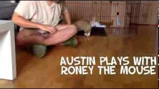Austin Playing With Roney The Mouse