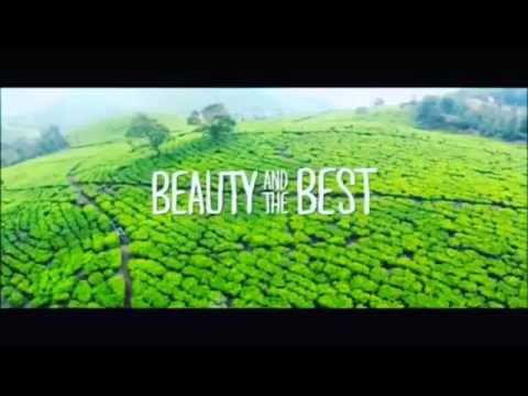 Ost beauty and the best