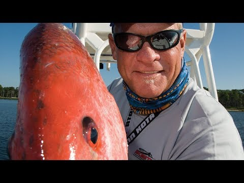 Oil Rig Fishing Venice Louisiana for Red Snapper and Bull Re