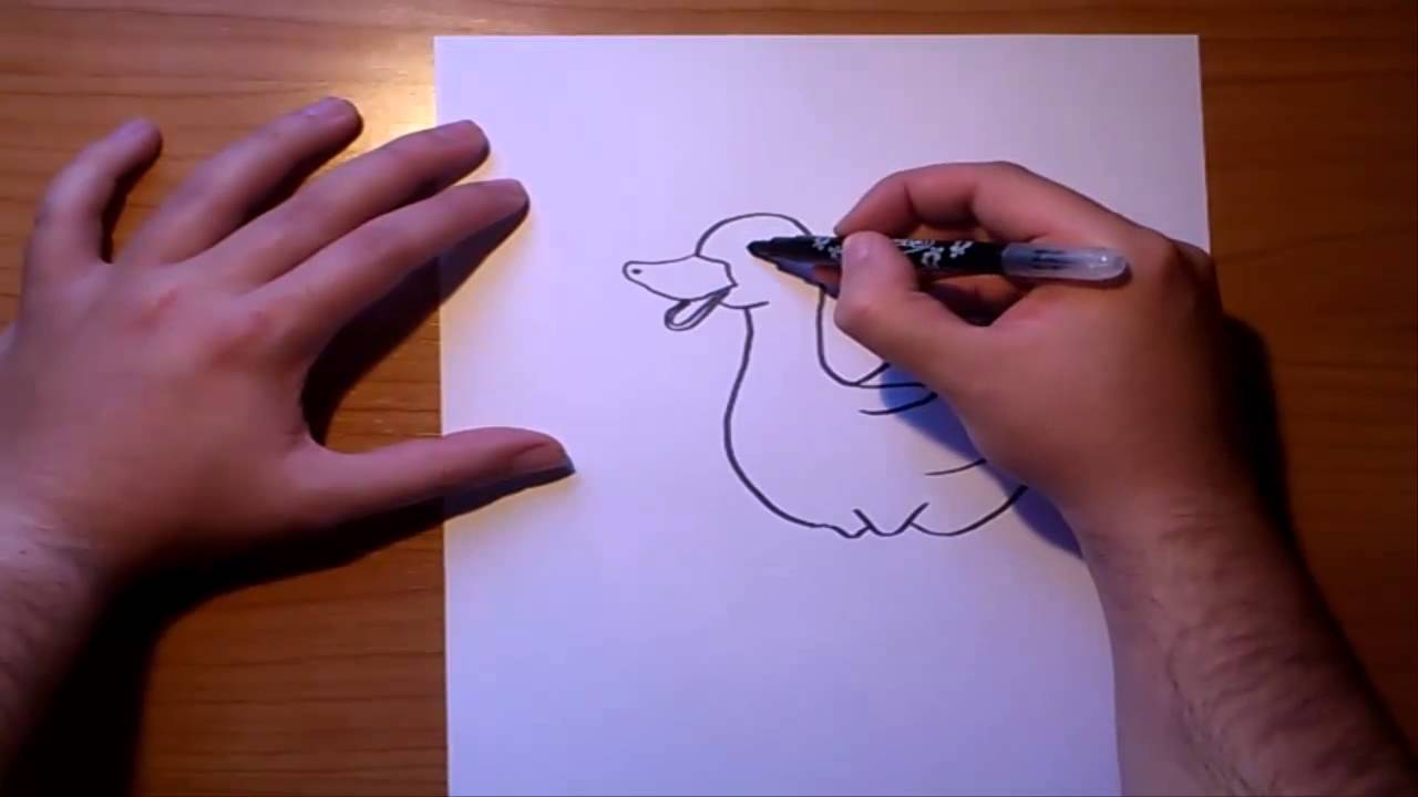 Como dibujar un pato paso a paso  How to draw a duck  YouTube