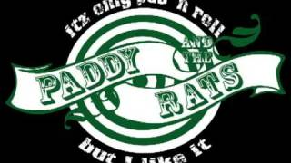 Watch Paddy  The Rats Bang video
