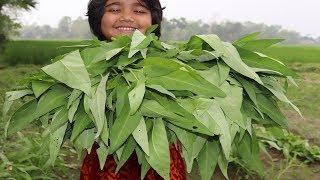 Farm Fresh Water Spinach Recipe Cooking By 5 Years Kid Healthy Kolmi Shak Curry Village Food