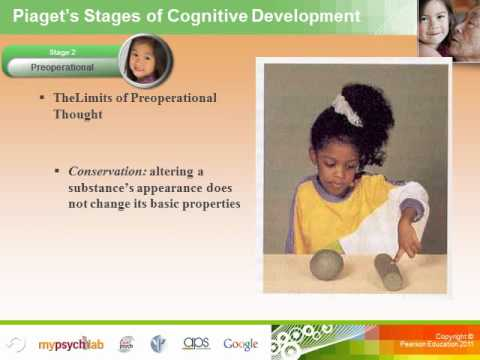 Human Growth and Developmental Psychology: Physical and Cogn
