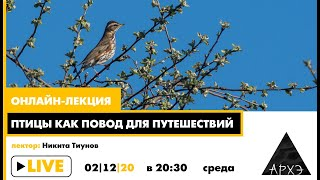 Онлайн лекция Птицы как повод для путешествий
