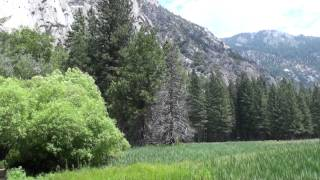 Zumwalt Meadow in Kings Canyon National Park (1080p)