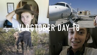 VLOGTOBER DAY 18: Beware of the Baboons | sunbeamsjess