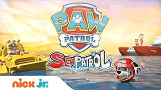 PAW Patrol Summer Special: 'Sea Patrol' Official Trailer | Nick Jr.