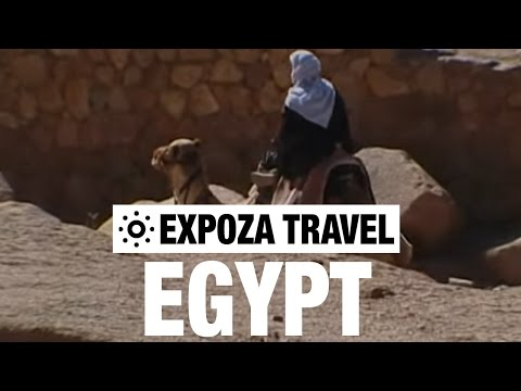 Discover The Land Of Pharaohs With Our Travel Guide!