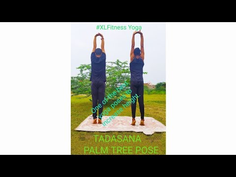 tadasana  palm tree pose  xlfitness yoga  youtube