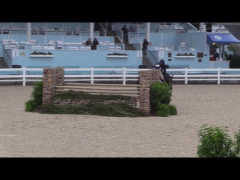 Video of CAMEO ridden by SCOTT STEWART from Net!