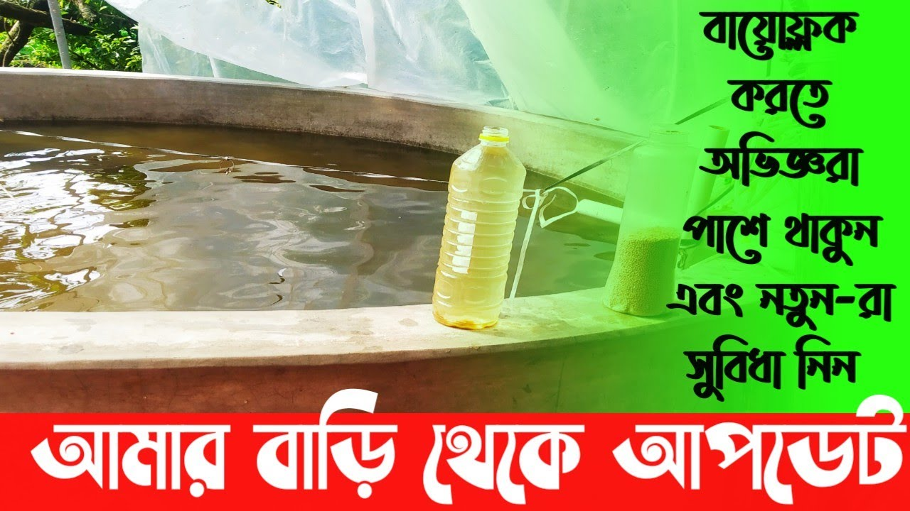 Biofloc Fish Farming // বায়োফ্লক করতে আমরা সবাই আপনার পাশে আছি