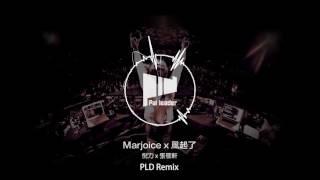 張敬軒 x 倪力-Marjoice x 風起了 (Pai LeaDer remix)