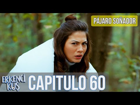 Pájaro Soñador - Capitulo 60 (Audio Español) | Erkenci Kuş