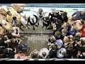 Club Wolverine has an 18-Under National Group of Over 50 Swimmers (Video Report)