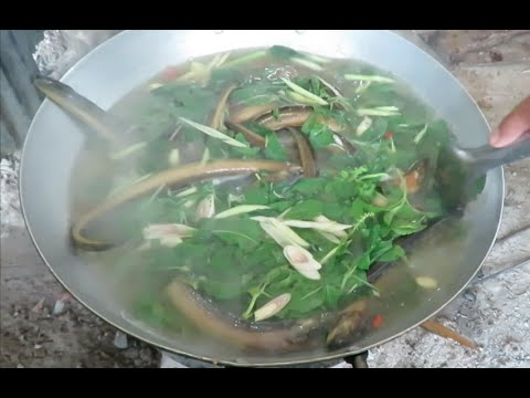 EEL Soup and Grilled EEL and Fried Nom Ansorm in Cambodia