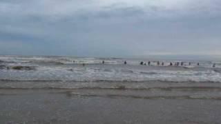 Pescaria - Rede de Arrastão - Balneário Rincão